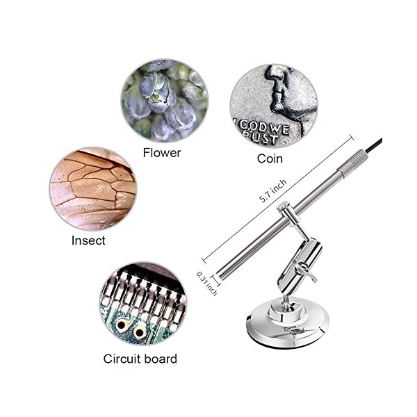 Digital USB Microscope, Teslong Portable Multi-function Magnifier Otoscope Intraoral Camera with 10-200X Magnification IP67 Waterproof Endoscope Inspection Camera for Android Smartphone PC and Mac