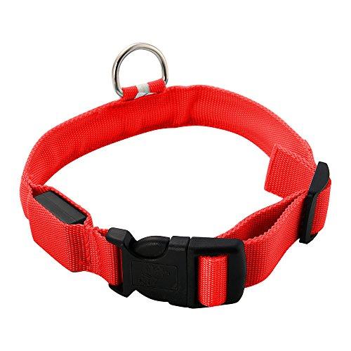 DIGIFLEX Collare LED di sicurezza, regolabile, lampeggiante, rosso per cani animali domestici medaglietta Large