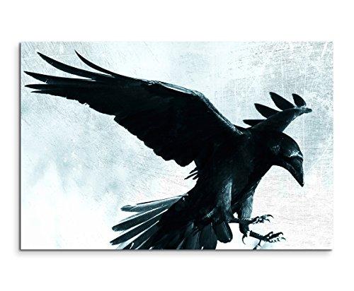 Sinus Art Wandbild 120x80cm Bild - Schwarze Krähe im Mondlicht