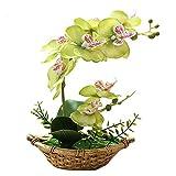 Fleurs artificielles avec Pot de 27 cm, Orchidée Phalaenopsis Orchidée Artificielle Bonsaï Permabloom avec Vase Décoration en Plein air pour Mariage, Maison, Bureau, Table, fête, décoration