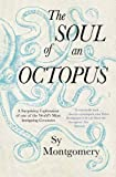 Produkt-Bild: The Soul of an Octopus: A Surprising Exploration Into the Wonder of Consciousness