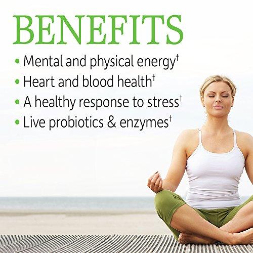 Garden of Life Vitamin B Complex – Vitamin Code Raw B Vitamin Whole Food Supplement, Vegan, 120 Capsules