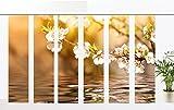 gardinen-for-life Flächenvorhang Blütenzauber Serie 6er, 6er Set, Jew. Gr.60x260 cm