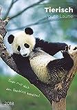 Tierisch gute Laune 2018 - Bildkalender (24 x 34) - Tierkalender