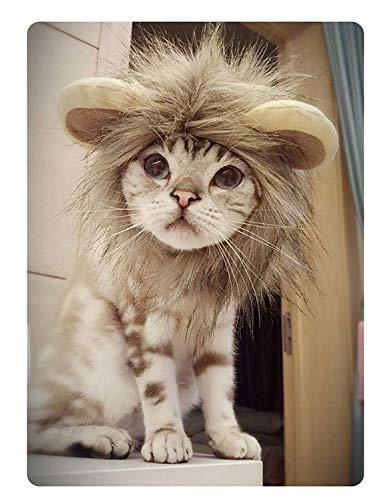 e Katzenperücke-Haustier-Kostüm-Perücke Löwe-Mähne-Perücke mit den Ohren für Kätzchen-Welpen-Kleidungs-Abendkleid mit den Ohren Herbst-Winter ()