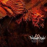 Anklicken zum Vergrößeren: Dawn of Ashes - Origin of the Ashes: the Dark Electro Years (Audio CD)