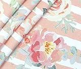 0,5m Premium Baumwolle - Floral Dream Stripes - apricot