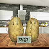 4M Green Science Potato Clock