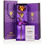 Oblivion Golden Rose Flower with Golden Leaf with Luxury Gift Box and Beautiful Carry Bag Great Gift Idea for Your Wife, Girl