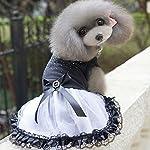 Costumi di Carnevale e Halloween per Chihuahua e Cani di piccola taglia Di Tutto