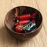 RISHIL WORLD Natural Coconut Shell Bowl Dishes Handmade Handicraft Vintage Craft Decorations
