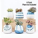 SZQLF Keramik-Pflanzgefäß, Pflanzgefäße für Sukkulenten, Kaktus, Blumen, Beste Geschenkidee, 15,2 cm