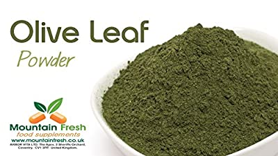 Olive Leaf Powder - Pure Leaf - Natural Antioxidant Source 25g FREE UK Delivery by Mountain Fresh