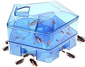 Skyfish Eco Friendly Cockroach Catcher Trap for Household Cockroaches and Pest Control