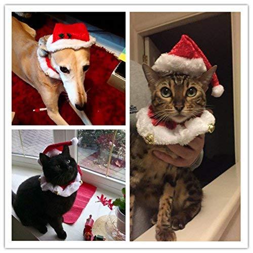 nachten Halsbänder und Hut Kragen mit Glocke Weihnachtshüte Halsband Krawatte Weihnachten Kostüm Set ()
