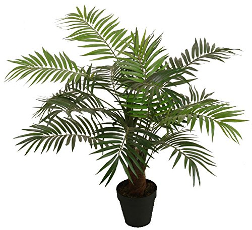 Best Artificial 100cm 3ft Paradise Palme Outdoor Innen tropischen Wintergarten Büro Garten Torrontes (Outdoor-palmen)