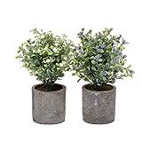 T4U Künstliche Blumen Bonsai Kunstpflanze im Topf, Dekorativ Plastik Zimmerpflanzen Series - Mini Blüten 2er Set