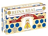 Robis Reina Real Defensas Jalea Real 2560 mg 20 Ampollas