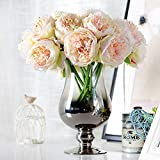 Silk Peony1 Bouquet 5 Heads Rtificial Fake Flower Bunch Bridal Wedding Living Room Office Table Home Garden Decoration Party Decor Christmas Decorative Floor Vase Filler Centerpieces Hotel Decoration (Champagne)