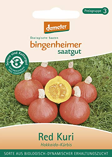 Bingenheimer Saatgut AG Bio Kürbis Red Kuri (2 x 1 Stk)