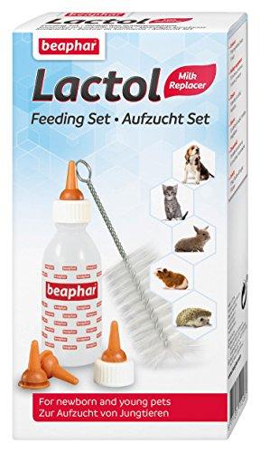 Aufzucht Set für Katzenbabys | Zum Aufziehen von Hunden, Kleintieren etc. | Spülmaschinenfest | 1 Aufzuchtflasche, 4 Sauger, 1 Reinigungsbürste