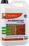 Wet effect - protecteur effet mouillé DALEP - 5 Litres