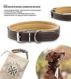 Jack & Russell Premium Leder Hunde Halsband Pluto - Original Leder Halsband - echtes Leder braun Pluto (L)