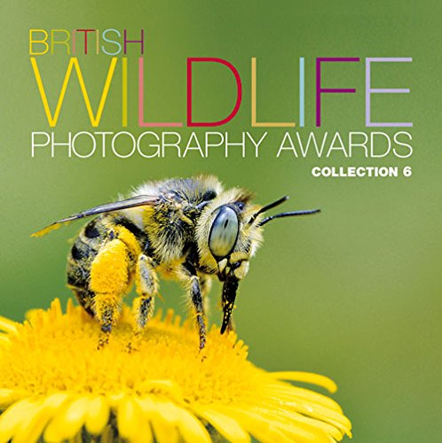 British Wildlife Photography Awards: Collection 6: Collection 6