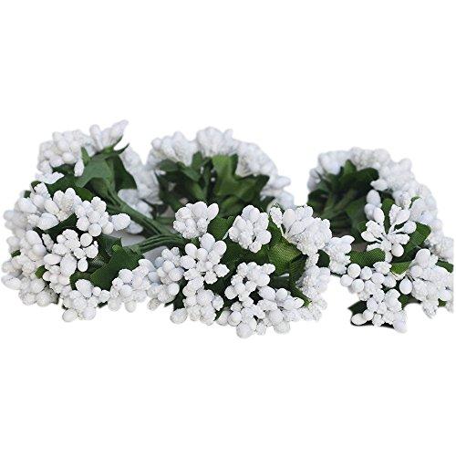 C.x.y. 144 bacche (set 12 fiori da 12 pistilli bacche) bomboniera confezione scatola fiore fai da te (bianco)