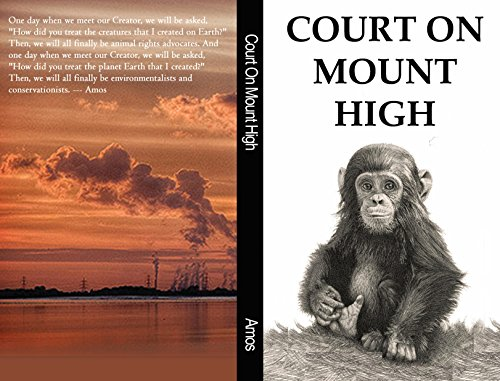 Court On Mount High book cover