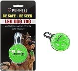 Best Linterna en los mundos - bennies mundo collares LED mascota etiquetas de perro Review