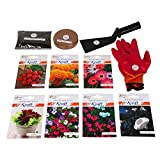 Kraft Seeds Garden Hobby Starter Seed Kit