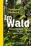 Im Wald: Kleine Fluchten für das ganze Jahr - Torbjørn Ekelund