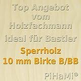 PiHaMi® 10 mm Birke Sperrholzplatte Qualität B/BB (152 x 50cm) GP 22,36 € pro m²