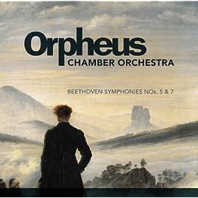 Symphony No. 5 in C Minor, Op. 67: III. Allegro