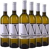 VIPAVA 1894 Vino bianco CHARDONNAY 2018, (6 x 0,75 l), vino bianco secco raccolto a mano