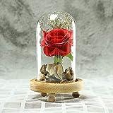 Hukz Rosige Glasabdeckung der romantischen Simulation, Valentinstaggeschenk,Romantische unsterbliche Blumen-Mikrolandschafts-Rosen-Simulations-Glasschirm führte Licht (Rot)