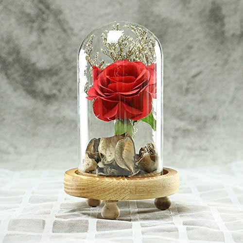 Rosennie Die Schöne und das Biest Rosen-Set Geschenk um Valentinstag Künstliche Gefälschte Rosen Blume Das Tier Blume In Glas Konservierte Blume Perfekt für Romantic Festival Geschenk (Rot A)