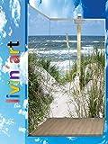 Original Livin'art Duschrückwand Rückwand WANDBILD Bad-Rückwand- Strand Düne Meer Gras Weg, Bad-Verkleidung, Fliesenersatz ohne FUGEN (Alu-Verbundplatte, 2 Platten mit Wunschmaß bis Größe 2)