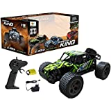 WebKreature 2.4GHz CHEETAH KING Turbo Muscle Buggy Slayer RC Monster Truck