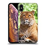 Liger Iphone - Best Reviews Guide