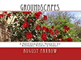 GroundScapes: A Photographic Tribute to Flowers, Plants & Fungi (English Edition)