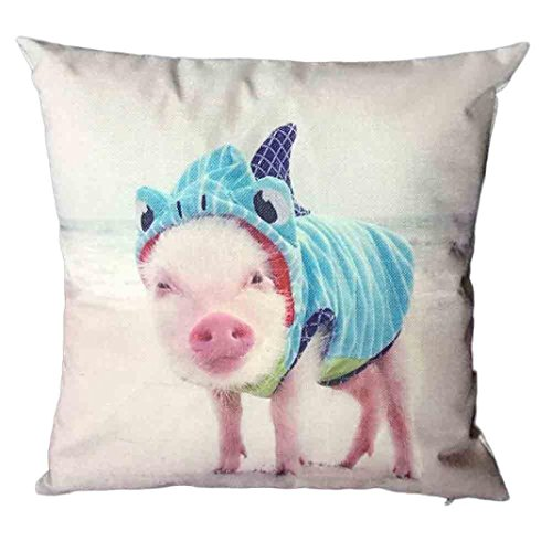 Fundas de cojín, a cute Animal Festival de decoración del hogar cuadrado sofá cama funda de almohada Funda de cojín, Pattern E, Size:45cm*45cm