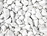 Doubleyou Geovlies & Baustoffe 10 kg Carrara Kies - Marmorkies weiß - Körnung 40-60 mm