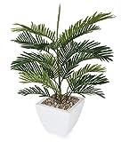Closer to Nature Artificiale 3 Piedi Areca Palm Tree - Seta Artificiale Impianti e Albero Artificiale Gamma