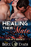 Healing Their Mate (Love of a Shifter Book 2) (English Edition)