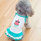 Veena Watermelon Vest Skirt Teddy Clothes Spring Clothes Than Bear Summer Puppy Spring and Autumn Thin Section Smallsized Summermans Vest Xs
