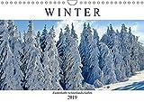Winter - Zauberhafte Schneelandschaften (Wandkalender 2019 DIN A4 quer): Ein Spaziergang durch märchenhafte Winterlandschaften (Monatskalender, 14 Seiten ) (CALVENDO Natur) - Rose Hurley