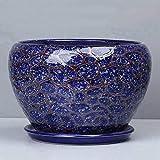 CJH Blaue einfache grüne Stiel-Orchidee-keramische eingemachte kreative Hauptabsorbierendes breathable Balkon-Blumentopf (Size : L)