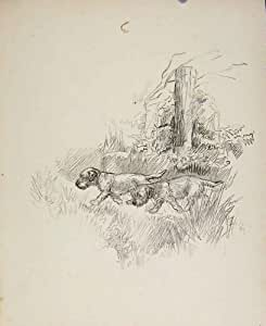 Vieux Chien de Dessin de Croquis de la Galerie d'Escrocs de l'Impression C1939